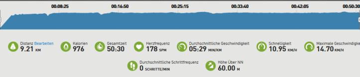 Lauf_20151203